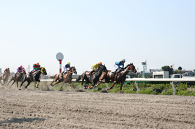 競馬 浦和 南関東競馬に属する浦和競馬場の特徴を含め、予想するコツを細部まで紹介!!